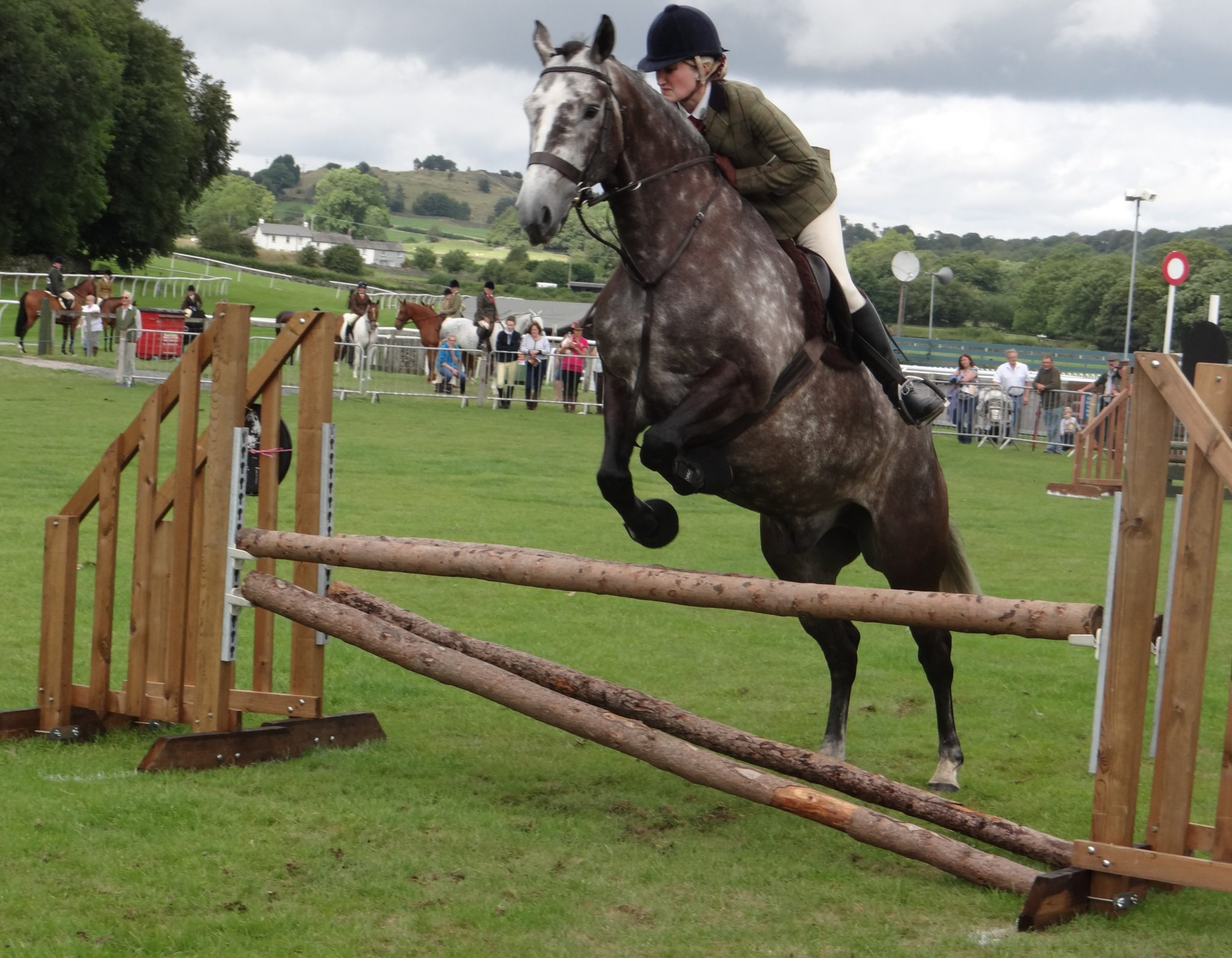 Cartmel Show 2014