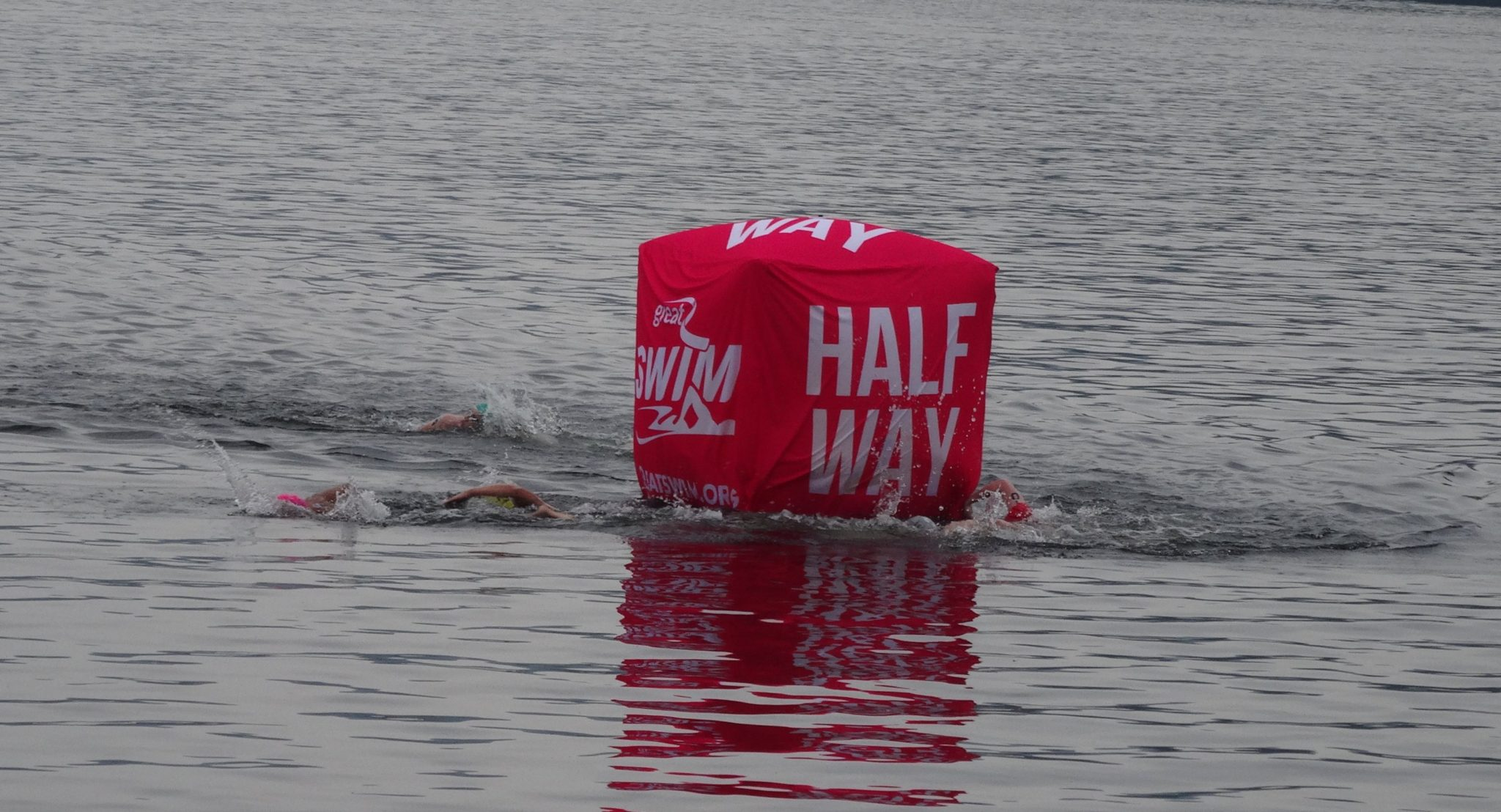 Great North Swim 2015