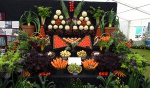 Holker Garden Festival 2016