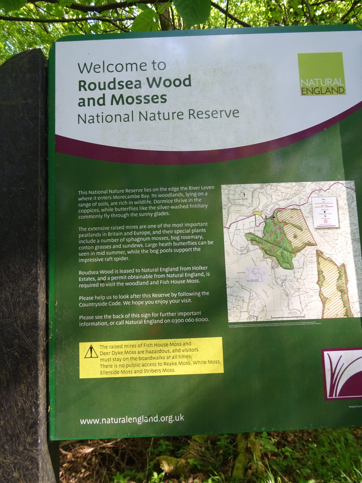 Roudsea Wood and Nature Reserve